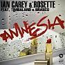 Amnesia - Ian Carey & Rosette ft. Timbaland