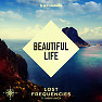 Bài hát Beautiful Life - Lost Frequencies , Sandro Cavazza