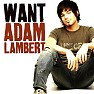 Want  (Single) - Adam Lambert