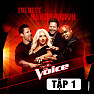 Album The Voice US Season 3 (Tập 1) - Various Artists