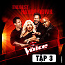 Album The Voice US Season 3 (Tập 3) - Various Artists