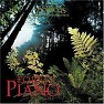 Bài hát A Path To Solitude - Dan Gibson
