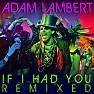 Bài hát If I Had You - Adam Lambert