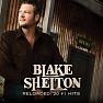 Bài hát Doin' What She Likes - Blake Shelton