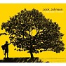 Bài hát Better Together - Jack Johnson