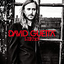 Bài hát What I Did For Love - David Guetta , Emeli Sandé