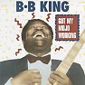 Bài hát Walkin In The Sun - B.B. King