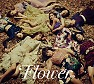 Bài hát 秋風のアンサー (Akikaze No Answer) - FLOWER (Japan)
