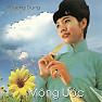 Bài hát Đôi Ngã Chia Ly - Phương Dung