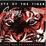 Bài hát Eye Of The Tiger - Survivor