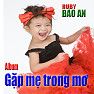 Album Gặp Mẹ Trong Mơ (5 tuổi) - Bé Bảo An
