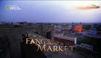 Tập 2 - Fangs Market -