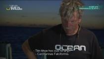 Tập 9 - Hammerhead Islands -