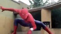 japanese spiderman -
