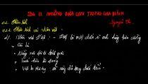 Zuni.vn - Những Đứa Con Trong Gia Đình - Phân Tích Các Nhân Vật (Phần 4) -