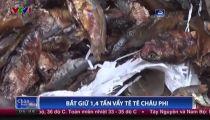 [Funny Collection] - Bắt 1,4 tấn vẩy tê tê trái phép , tương đương 10 nghìn con tê tê bị giết hại -