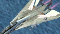 F-14 WIng Sweep.wmv -