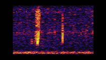 The Bloop: A Mysterious Sound from the Deep Ocean | NOAA SOSUS -