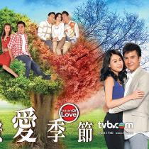 Tình yêu bốn mùa