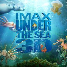 Under The Sea (Dưới Đáy Đại Dương)