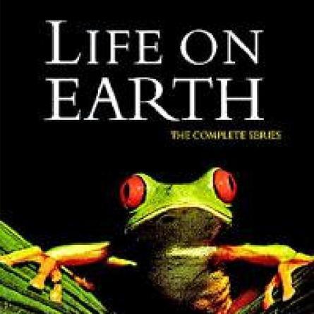 Life On Earth - Sự Sống Trên Trái Đất