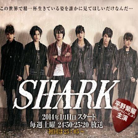 Shark (ntv)
