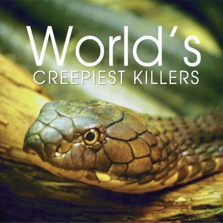 Worlds Creepiest Killers - Những Sát Thủ Ghê Rợn Nhất Thế Giới
